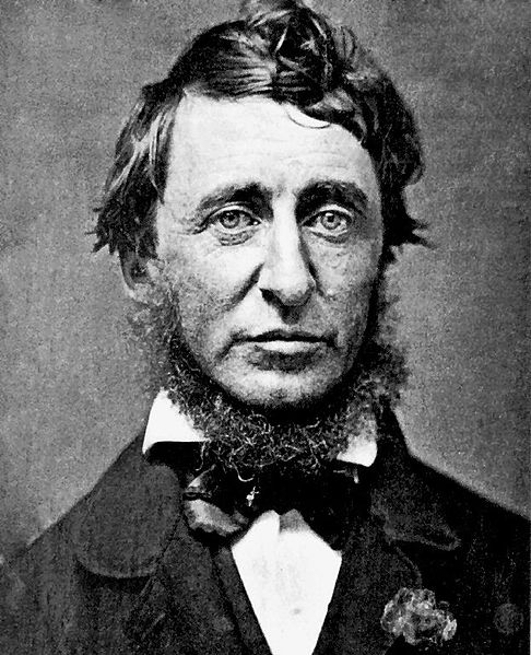 140713-fig._1_-henry_david_thoreau